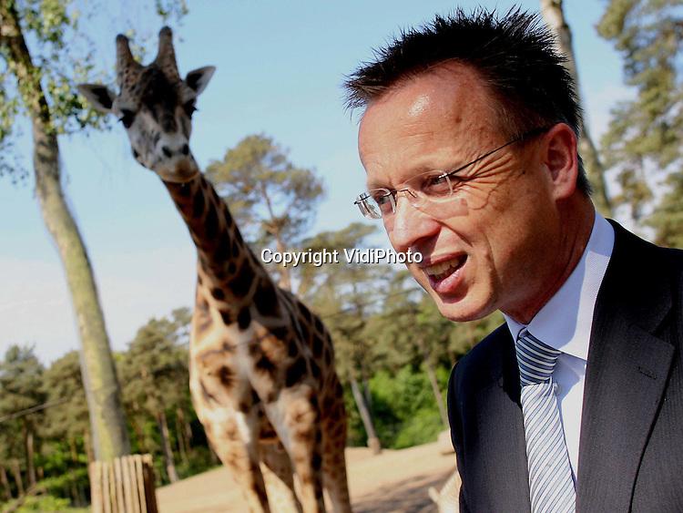 Foto: VidiPhoto..ARNHEM - De 100-jarige CNV heeft woensdag in Burgers' Zoo in Arnhem tussen de giraffen de aftrap gegeven voor de festiviteiten in het kader van 100 jaar CNV. CNV-voorzitter René Paas verrichtte de openingshandeling op de savanne van het Arnhemse dierenpark. Het 'tafelgesprek' in de open lucht was de eerste activiteit van de jarige CNV.