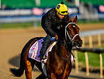 LOUISVILLE, KENTUCKY - APRIL 29: Liora, trained by Wayne Catalano, exercises in preparation for the Kentucky Oaks at Churchill Downs in Louisville, Kentucky on April 29, 2019. John Voorhees/Eclipse Sportswire/CSM