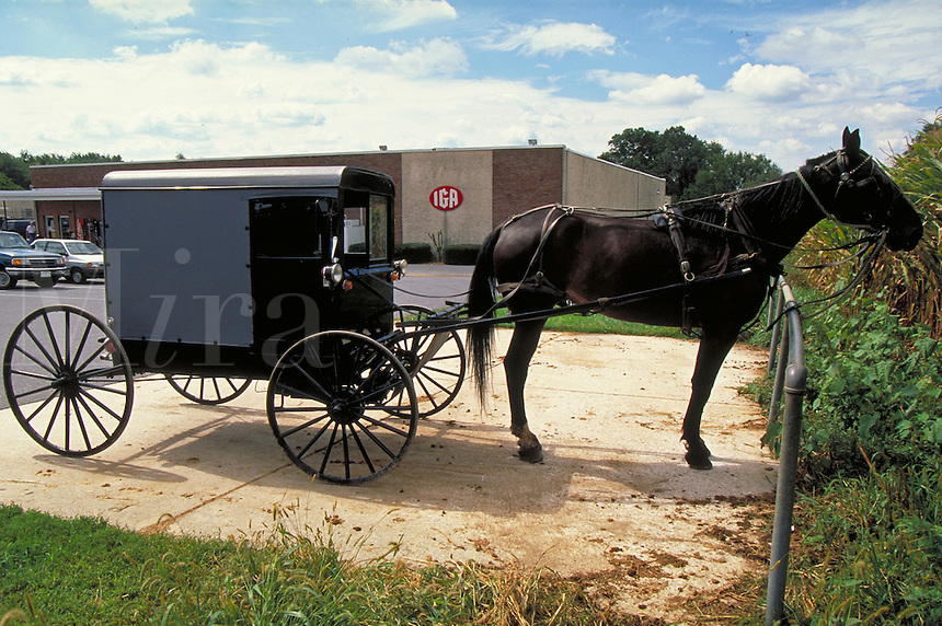 Horse and buggie parked outside of a store. Strasburg Pennsylvania USA Lancaster County.