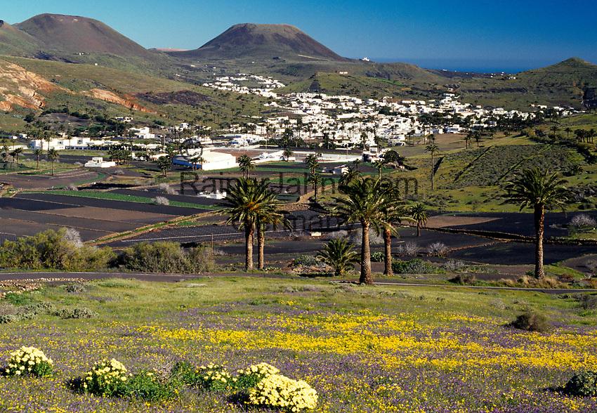 Spanien, Kanarische Inseln, Lanzarote, Blick auf Haria   Spain, Canary Island, Lanzarote, view at Haria