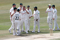 Matt Milnes of Notts celebrates taking the wicket of Ravi Bopara during Essex CCC vs Nottinghamshire CCC, Specsavers County Championship Division 1 Cricket at The Cloudfm County Ground on 23rd June 2018