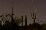 Star Tracers, AZ
