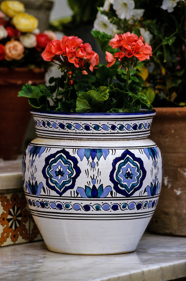 Ceramics, La Marsa,  Tunisia.  Blue Tones on White, Typical of Nabeul Pots.