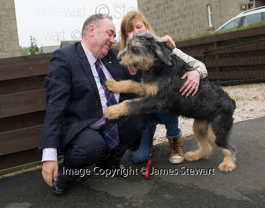 First Minister Alex Salmond on the campaign trail in Ellon with pooch Callie and owner Jacquie Seaton,45.
