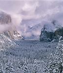 Clearing Storm, Yosemite Valley, Yosemite National Park, California