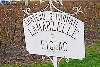 Vineyard. Chateau Grand Barrail Lamarzelle Figeac. Saint Emilion, Bordeaux, France