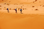 Stage 6 MDS 2013