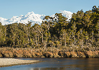 Coastal rainforest and Southern Alps at Gillespies Lagoon, Westland Tai Poutini National Park, UNESCO World Heritage Area, West Coast, New Zealand, NZ