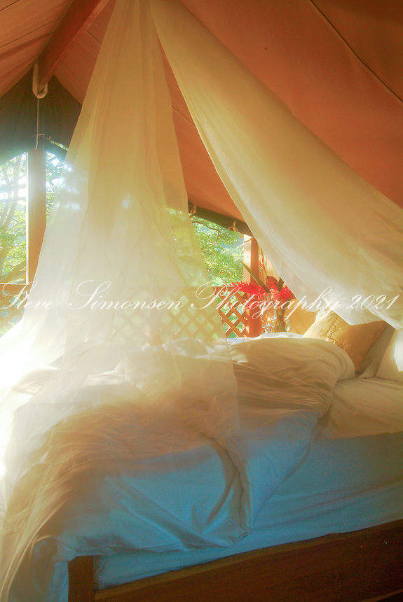 Morning inside a teak bungalow <br /> Mt Victory Farm<br /> West end of St Croix<br /> U.S. Virgin Islands