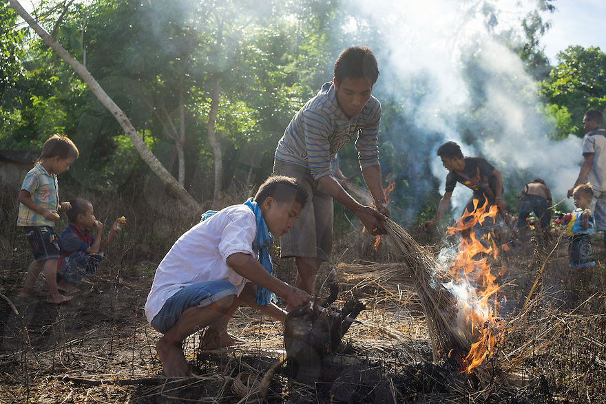 March 25, 2016 - Wainyapu (Indonesia). Peter cleans the body of a dog that has been sacrificed for the Good Friday. In rotation, each family in the village provide animals such as pigs, chickens and dogs for being sacrificed during religious ceremonies such as Christmas, Easter, funerals or weddings. © Thomas Cristofoletti / Ruom