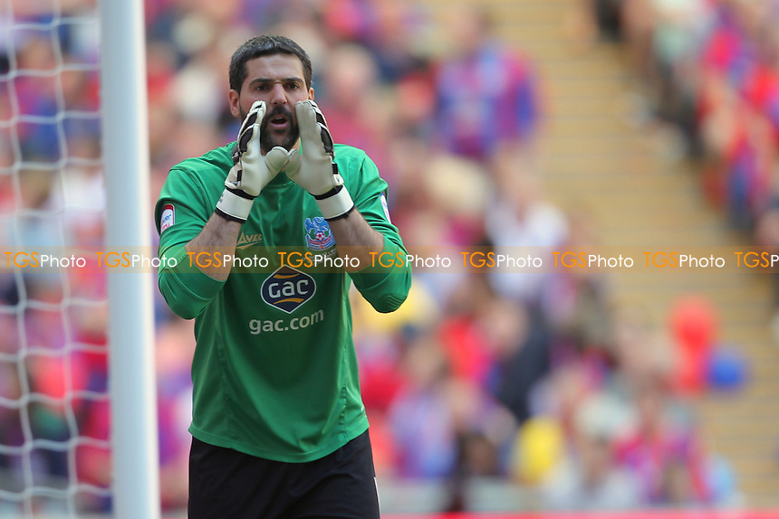 Julián Speroni of Crystal Palace - Crystal Palace vs Watford - NPower Championship Play-Off Final at Wembley Stadium, London - 27/05/13 - MANDATORY CREDIT: Simon Roe/TGSPHOTO - Self billing applies where appropriate - 0845 094 6026 - contact@tgsphoto.co.uk - NO UNPAID USE