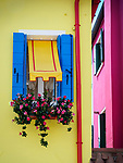 Windows, flowers, yellow and pink walls, Blue shutters. The colorful village of Burano, Italy.