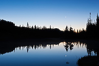 Forest reflection in Reflection lakes at dawn, Mt Rainier national park, Washington, USA