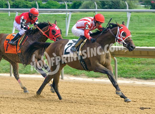Pulling Away winning at Delaware Park on 9/2/16