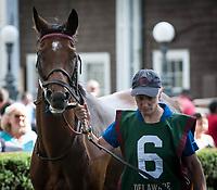 07-08-17 Delaware Oaks Day