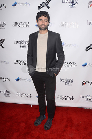 BEVERLY HILLS, CA - JANUARY 10: Adrian Grenier at the  Los Angeles Premiere of Beyond The Night at the Ahrya Fine Arts Theater in Beverly Hills, CA. January 10, 2019. Credit: David Edwards/MediaPunch