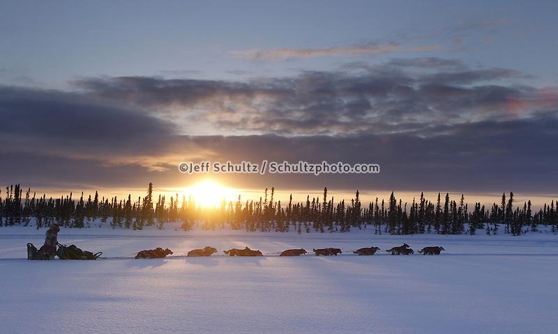Thursday March, 2012   DeeDee Jonrowe mushes on a swamp as the sun sets near the Cripple checkpoint.   Iditarod 2012.