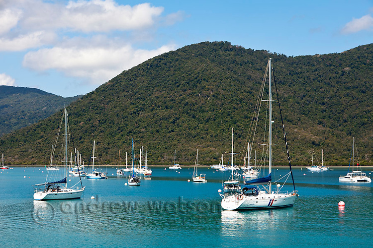 Boats in Shute Harbour.  Airlie Beach, Whitsundays, Queensland, Australia