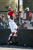 February 21, 2009:  Catcher Danny Benedetti (13) of St. John's University during the Big East-Big Ten Challenge at Jack Russell Stadium in Clearwater, FL.  Photo by:  Mike Janes/Four Seam Images