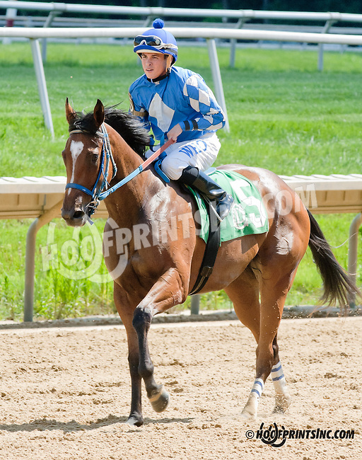 Jonesin for Jerry winning at Delaware Park on 6/29/13