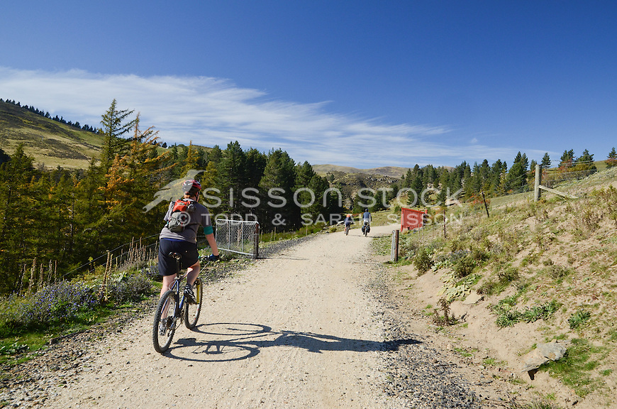group of three (3) cyclists riding on the Otago rail trail in, the South Island of  New Zealand. Between Hyde and Tiroiti.  Autumn gangers hut and gate in shot.