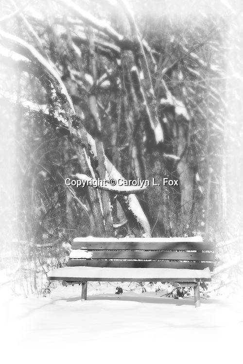 A desserted park bench is seen in a snowy scene by the woods.