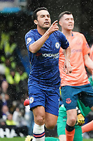 Chelsea's Pedro celebrates scoring his side's goal <br /> <br /> Photographer Stephanie Meek/CameraSport<br /> <br /> The Premier League - Chelsea v Everton - Sunday 8th March 2020 - Stamford Bridge - London<br /> <br /> World Copyright © 2020 CameraSport. All rights reserved. 43 Linden Ave. Countesthorpe. Leicester. England. LE8 5PG - Tel: +44 (0) 116 277 4147 - admin@camerasport.com - www.camerasport.com