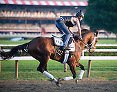 A lookback at Saratoga 2010 Part 2 - IN PROGRESS