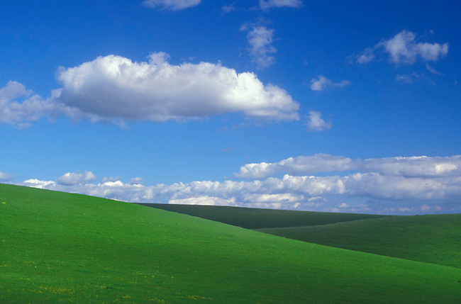 Green hills in Napa County