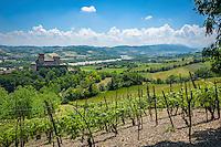 Italy, Emilia-Romagna, Langhirano: vineyards and Castello di Torrechiara | Italien, Emilia-Romagna, Langhirano: Weinberge und das Castello di Torrechiara