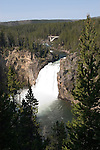 WY: Wyoming, Yellowstone National Park:.Upper Falls on Yellowstone River..Photo #: yellow1093..Photo copyright Lee Foster, 510/549-2202, lee@fostertravel.com, www.fostertravel.com..