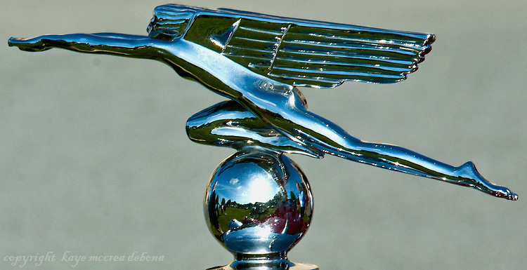 NE Rolls Royce and Bentley Club at the Biltmore Estate