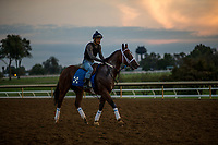 October 05 2018 : Miss Sunset at Keeneland Racecourse on October04, 2018 in Lexington, Kentucky. Evers/ESW/CSM