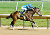 Doe winning The Beautiful Day Stakes at Delaware Park on 5/31/12