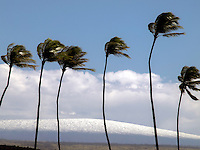 Snow-covered Mauna Loa in the distance, as seen from Mauna Lani Resort, Big Island.