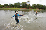 Sharks Flalling Around In Pen