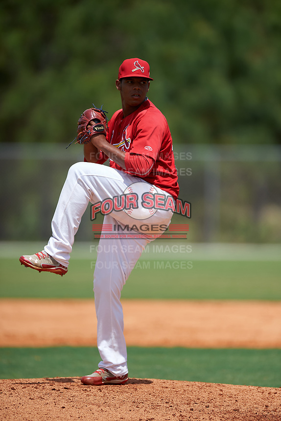 St. Louis Cardinals pitcher Yeison Medina (35) during a Minor League Spring Training intrasquad game on March 31, 2016 at Roger Dean Sports Complex in Jupiter, Florida.  (Mike Janes/Four Seam Images)