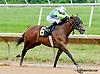 Ageless winning at Delaware Park on 7/25/13