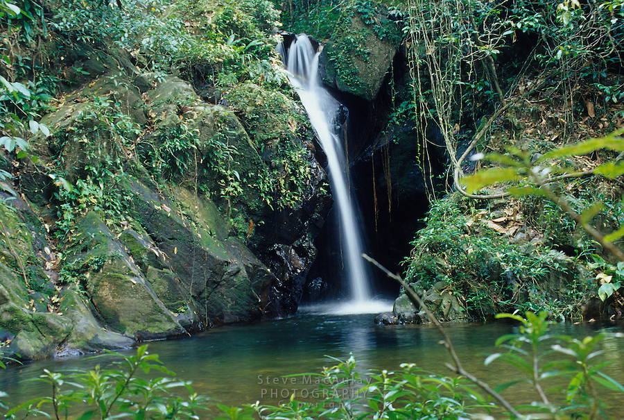 Lush jungle scene of waterfall and pool, Cockscomb Basin WIldlife Sanctuary, Belize