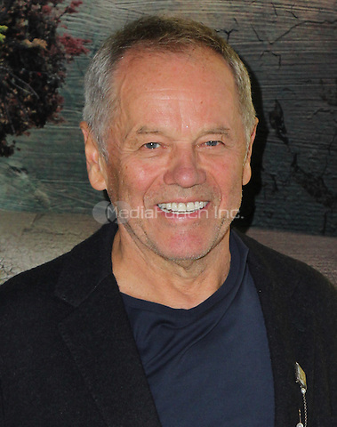 LOS ANGELES, CA - OCTOBER 24: Wolfgang Puck attends the Screening of National Geographic Channel's 'Before The Flood' at Bing Theater At LACMA on October 24, 2016 in Los Angeles, California. (Credit: Parisa Afsahi/MediaPunch).