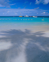Antigua, West Indies<br /> Single palm tree shadow on the white sand beach at Dickinson Bay