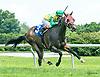 Maggiesfreuddnslip winning at Delaware Park on 7/8/17