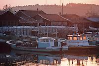 Europe/France/Aquitaine/33/Gironde/Bassin d'Arcachon/La Teste-de-Buch: port ostréicole, lumière du soir