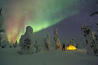 Winter camp in boreal forest, interior, Alaska.