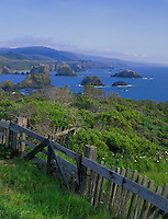 Mendocino County, CA<br /> Weathered wooden fence on a hillside overlooking seastacks in Greenwood Cove near Cuffeys Point on California's North Coast