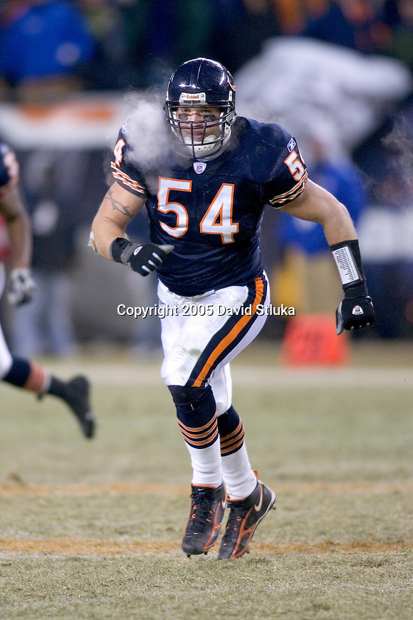 Chicago Bears linebacker Brian Urlacher (54) during an NFL football game against the Atlanta Falcons on December 18, 2005 at Soldier Field in Chicago, Illinois. The Bears defeated the Falcons 16-3. (Photo by David Stluka)