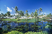 Costa do Sauipe, Brazil. Idyllic tourist resort with green grass and palm trees, water lilies, blue sky. Bahia State.