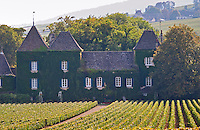 Vineyard. Chateau du Clos de la Commaraine. Pommard, Cote de Beaune, d'Or, Burgundy, France
