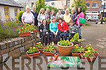 FLOWER POWER: KDYS Youth Group have helped plant flowers to brighter up the garden for elderly residents in Reidy's Terrace, Tralee. Pictured front l-r were: Anna Douglas, Margaret O'Brien, Mary Brigid O'Brien. Back l-r were: Eddie McQueen, Simon Ross, Brigette Dowling, Fiona O'Halloran, Alison O'Sullivan, Jade enright, George Carey, Nuala Carey, Shannon Carey, Saoirse Carey and Ronan Carey.