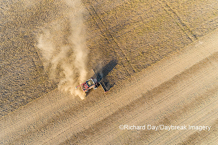 63801-13408 Harvesting soybeans in fall-aerial  Marion Co. IL
